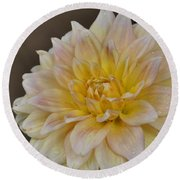 Peaches And Cream Dahlia Round Beach Towel