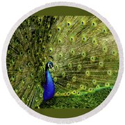 Peacock At Frankenmuth Michigan Round Beach Towel
