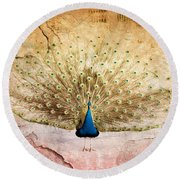 Peacock Bird Textured Background Round Beach Towel