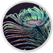 Peacock Feather With Dark Background Round Beach Towel