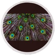 Peacock Feathers Upside Down Round Beach Towel