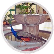 Peacock - Havana Cuba Round Beach Towel