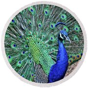Peacock In A Oak Glen Autumn 2 Round Beach Towel
