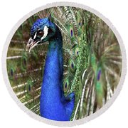 Peacock Mating Season Round Beach Towel