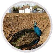 Peacock On The Farm Round Beach Towel