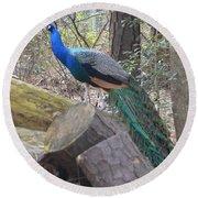 Peacock On Woodpile Round Beach Towel