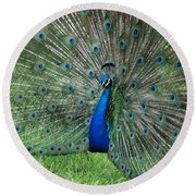 Peacocks Glory Round Beach Towel