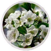 Pear Tree Blossoms 1 Round Beach Towel