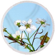 Pear Tree Blossoms 6 Round Beach Towel