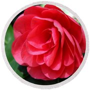 Pearl Of Beauty - Red Camellia Round Beach Towel