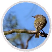 Pearly-vented Tody-tyrant Round Beach Towel