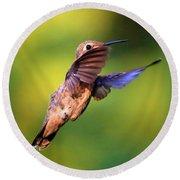 Peek-a-boo Hummingbird Round Beach Towel