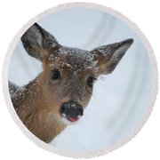 Peek A Doe Round Beach Towel