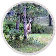 Peekaboo Deer Round Beach Towel