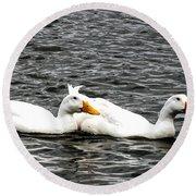 Pekin Ducks Round Beach Towel