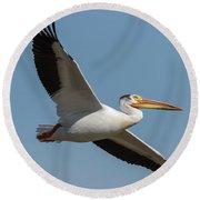 Pelican 2017-1 Round Beach Towel