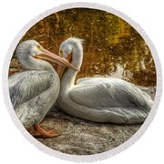 Pelican Bay  Round Beach Towel