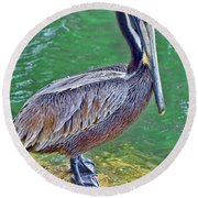 Pelican By The Pier Round Beach Towel