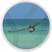 Pelican Flying In The Carribean Waters Off Aruba Round Beach Towel