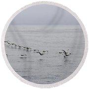 Pelican Formation Round Beach Towel