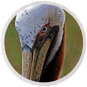 Pelican Head Round Beach Towel