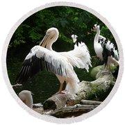 Pelican Hideaway Round Beach Towel