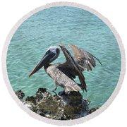 Pelican In Aruba Landing On Lava Rock Round Beach Towel