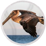 Pelican In Flight At Sunset Round Beach Towel