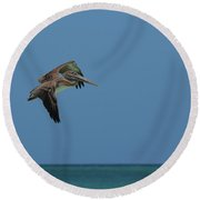 Pelican In Flight Over Gorgeous Tropical Waters Of Aruba Round Beach Towel