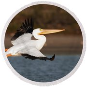 Pelican Lift Off Round Beach Towel
