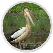 Pelican Mudmasks Round Beach Towel