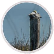 Pelican On A Piling Round Beach Towel