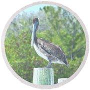 Pelican On Post Round Beach Towel