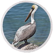 Pelican On Rock Round Beach Towel