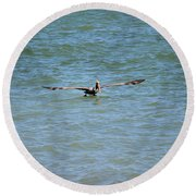 Pelican On The Move Round Beach Towel