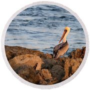 Pelican On The Rocks Round Beach Towel