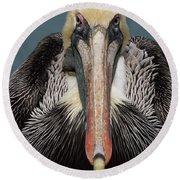 Pelican Stare Round Beach Towel