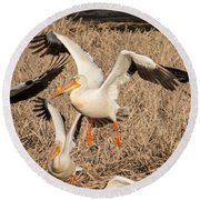 Pelican Takeoff Round Beach Towel