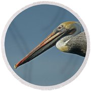 Pelican Upclose Round Beach Towel