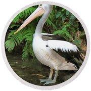 Pelican With A Bird Park In Bali Round Beach Towel