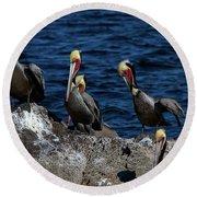 Pelicanos Round Beach Towel