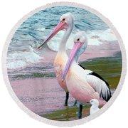 Pelicans At Pearl Beach 5.1 Round Beach Towel