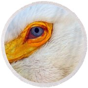 Pelican's Eye Round Beach Towel