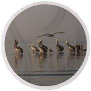 Pelicans On Beach Round Beach Towel