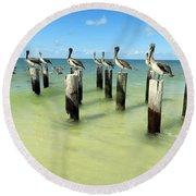 Pelicans On Pier Pilings Round Beach Towel