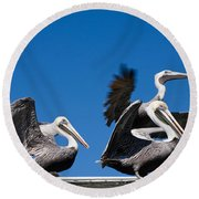Pelicans Take Flight Round Beach Towel