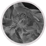 Peonie In Bw Round Beach Towel