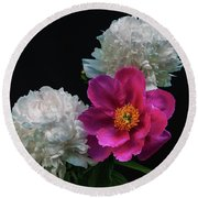 Peonies - Beautiful Flowers - On The Right Is One Of The First Places Among The Garden Perennials Round Beach Towel