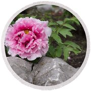Peony On The Rocks - The Marvels Of Spring Round Beach Towel