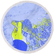 Perch Blue Yellow Round Beach Towel
